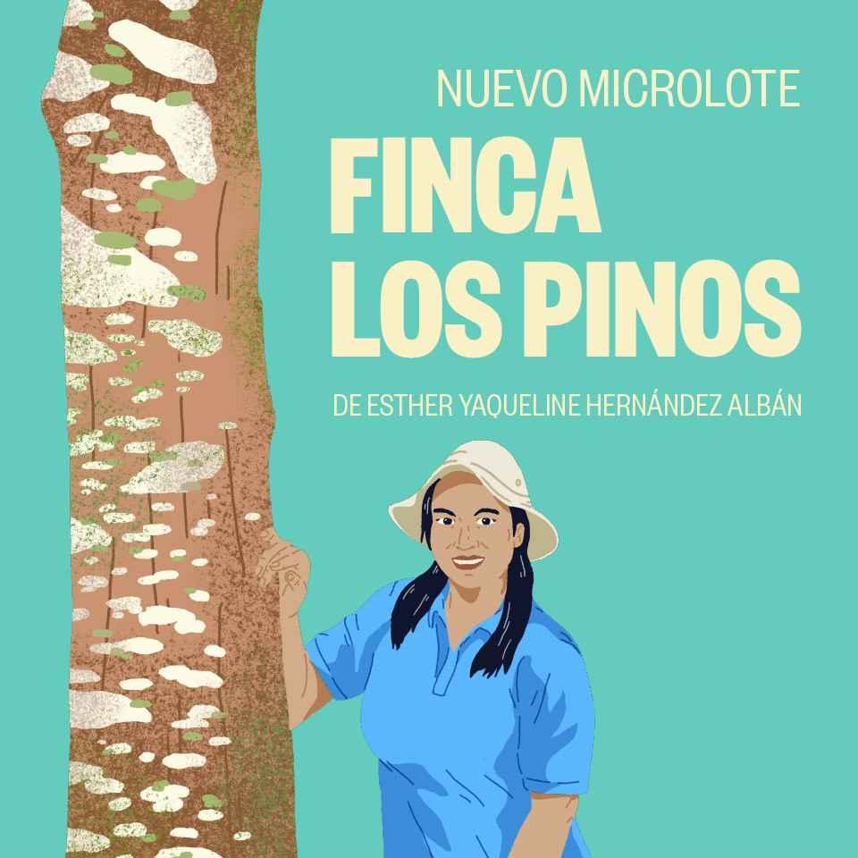 FINCA LOS PINOS